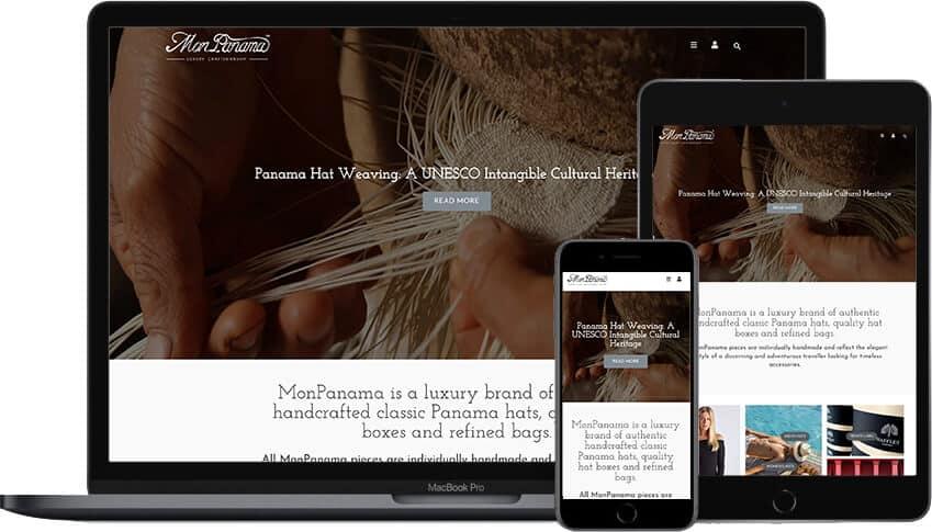 Web Design Portfolio MonPanama